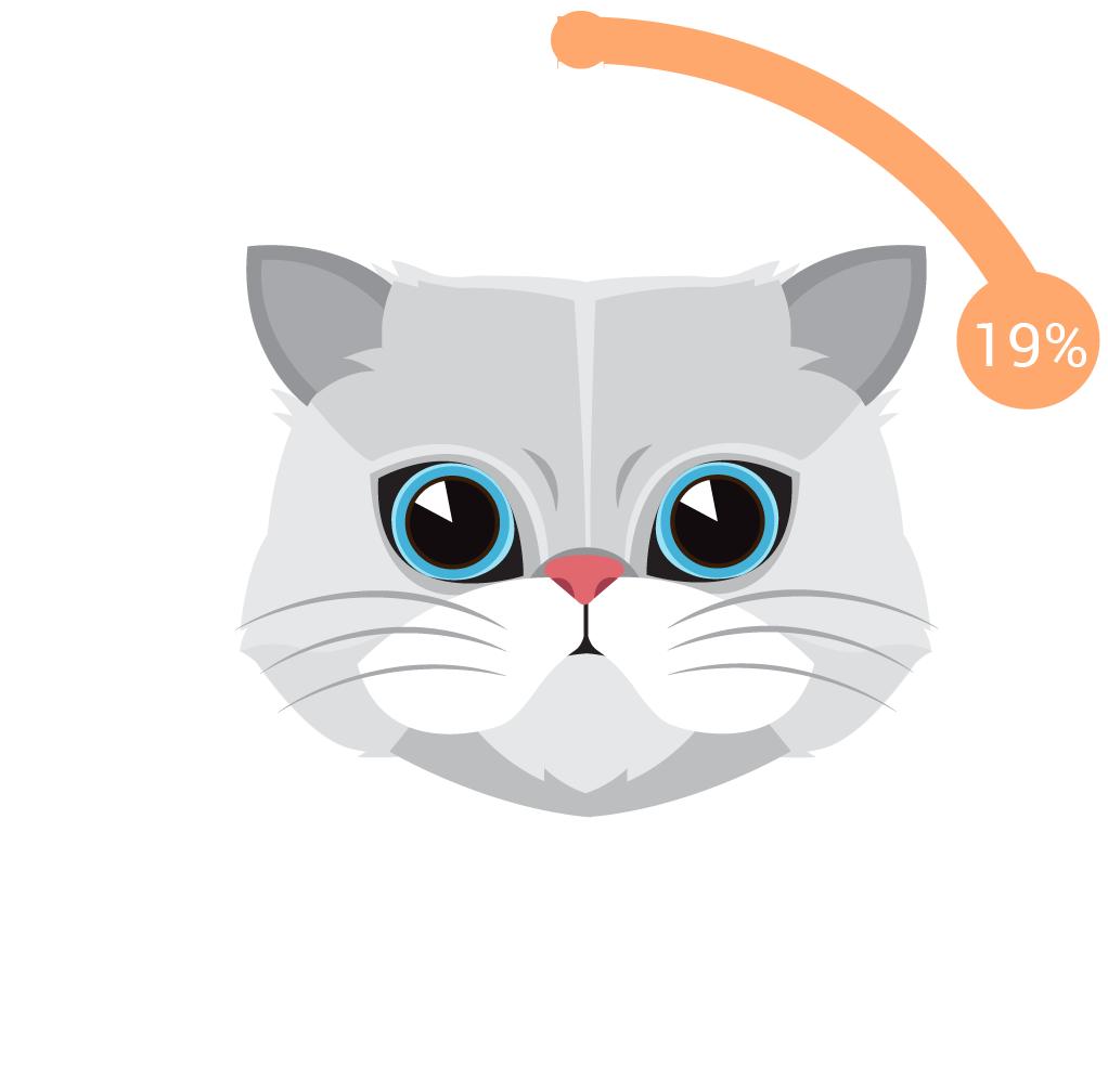 WellRight - Cats Are Still Okay By Us