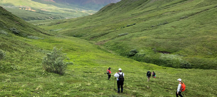 How to Create an Ecosystem of Engaged Employees and Happy Hikers
